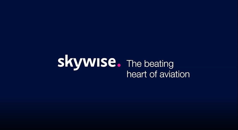 Skywise | Palantir